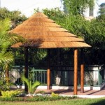 African Thatch